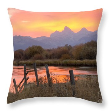 Fleeting Moments Throw Pillow