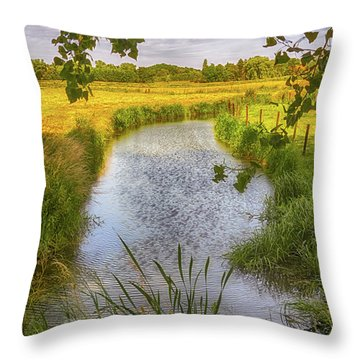 Flemish Creek Throw Pillow