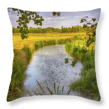 Flemish Creek Throw Pillow