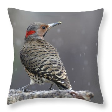 Flicker In Snowstorm Throw Pillow