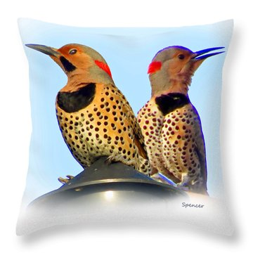 Flicker X2 Throw Pillow