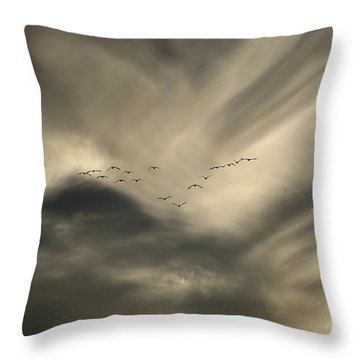 Throw Pillow featuring the photograph Flight 016 Westbound by Robert Geary