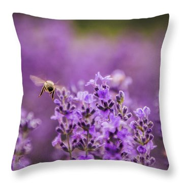 Flight 170617 Throw Pillow
