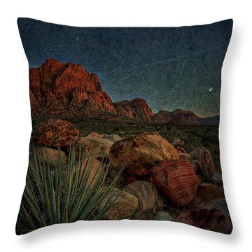 flight AM Throw Pillow