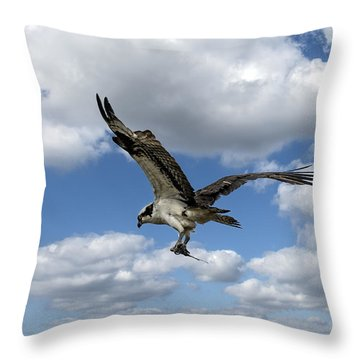 Flight Among The Clouds Throw Pillow