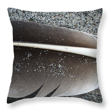 Flight Feather Throw Pillow