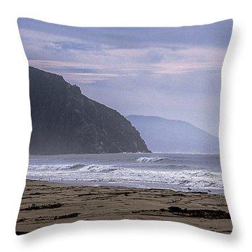 Flight From Morro Bay Throw Pillow