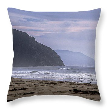 Flight Fro Morro Bay Throw Pillow