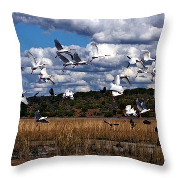 Throw Pillow featuring the photograph Flight by Karen Zuk Rosenblatt