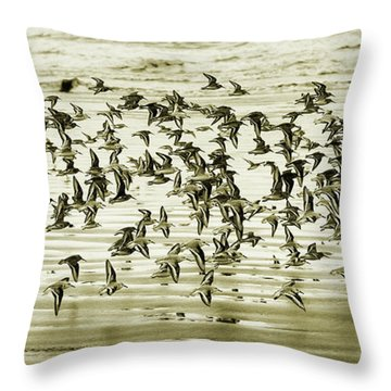 Throw Pillow featuring the photograph Flight by Mary Jo Allen
