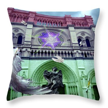 Flight Throw Pillow by Melinda Dare Benfield