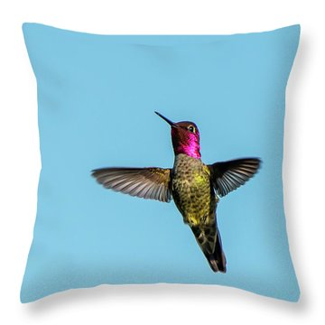 Flight Of A Hummingbird Throw Pillow