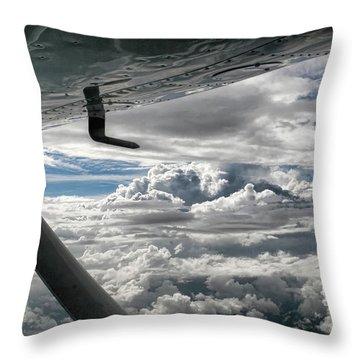 Flight Of Dreams Throw Pillow