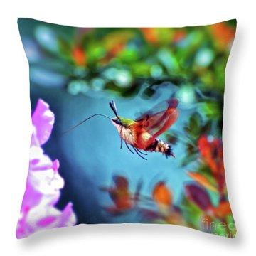 Throw Pillow featuring the photograph Flight Of Mystery - Hummingbird Moth by Kerri Farley