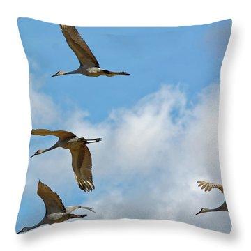 Flight Of The Cranes Throw Pillow