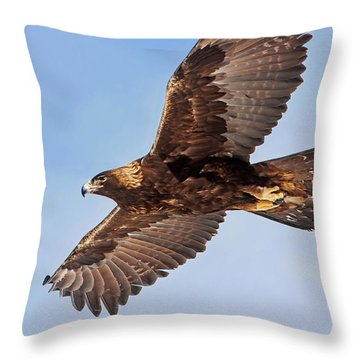 Flight Of The Golden Eagle Throw Pillow