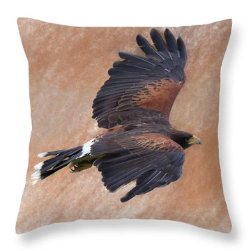Flight Of The Harris Hawk Throw Pillow