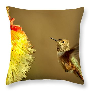 Flight Of The Hummer Throw Pillow by Mike  Dawson