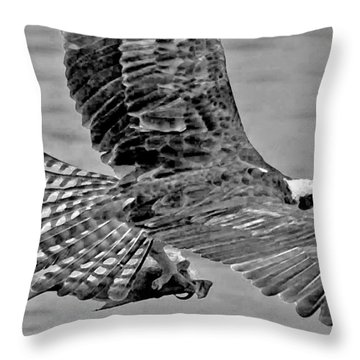 Flight Of The Osprey Bw Throw Pillow