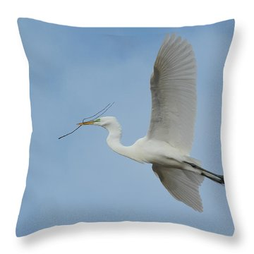 Throw Pillow featuring the photograph Flight Path by Fraida Gutovich