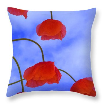 Flight Red Throw Pillow