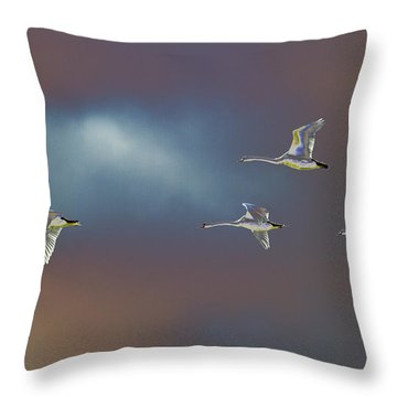 Flight Throw Pillow by Richard Patmore