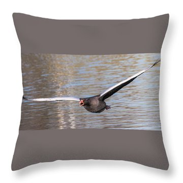 Flight Throw Pillow by Sergey Simanovsky
