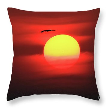 Flight To The Sun Throw Pillow