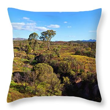 Flinders Ranges Throw Pillow by Bill Robinson