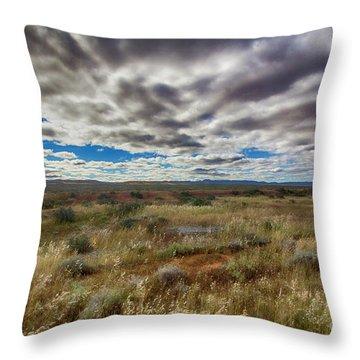 Throw Pillow featuring the photograph Flinders Ranges Fields  by Douglas Barnard