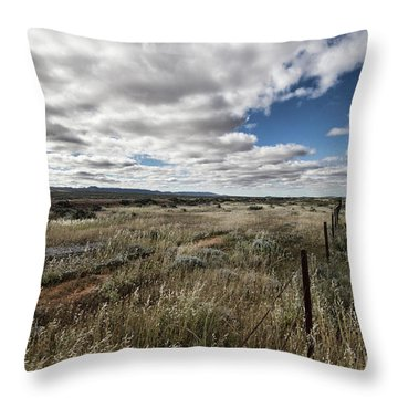 Throw Pillow featuring the photograph Flinders Ranges Fields V2 by Douglas Barnard