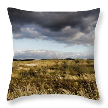 Throw Pillow featuring the photograph Flinders Ranges Fields V3 by Douglas Barnard