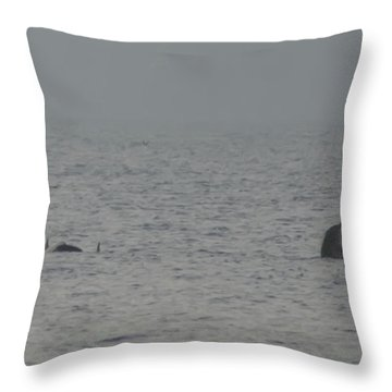 Flipper Throw Pillow by Bill Cannon