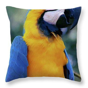 Flirtacious Macaw Throw Pillow by DigiArt Diaries by Vicky B Fuller