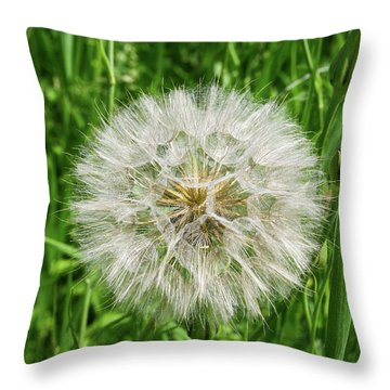 Fll-3 Throw Pillow