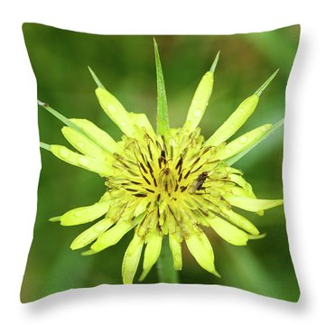 Fll-4 Throw Pillow