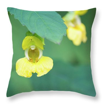 Fll-7 Throw Pillow