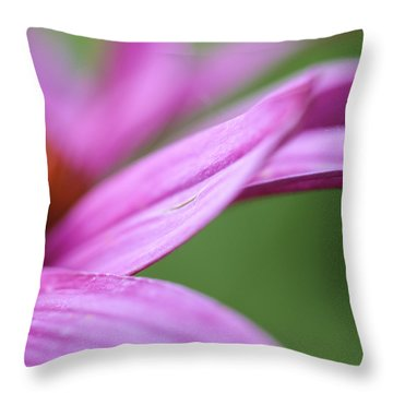 Throw Pillow featuring the photograph Float Away by Christi Kraft