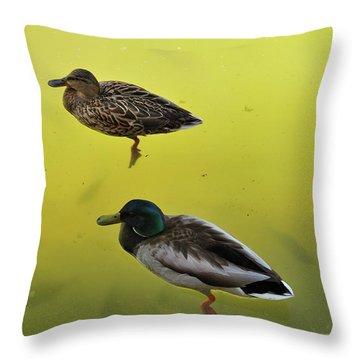 Floating Around Throw Pillow