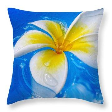 Floating Frangipani - Plumeria Alba Throw Pillow by Kaye Menner