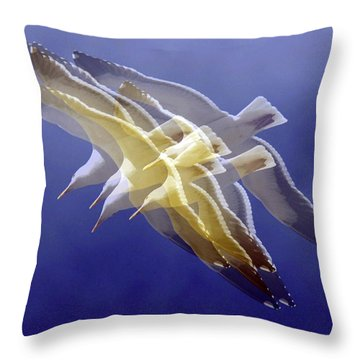 Throw Pillow featuring the photograph Floating Gulls by Howard Bagley