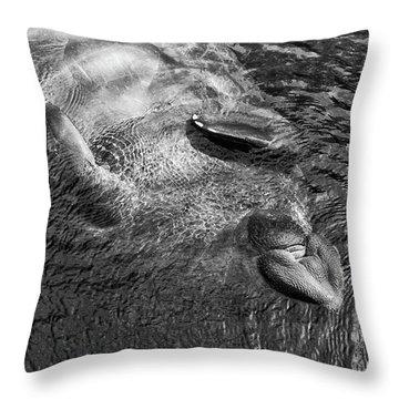 Floating Manatee Throw Pillow