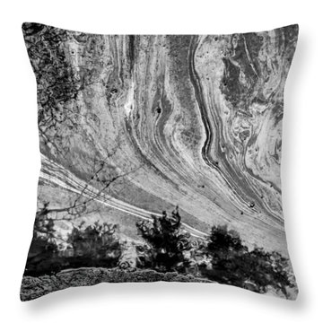 Floating Oil Spill On Water Throw Pillow