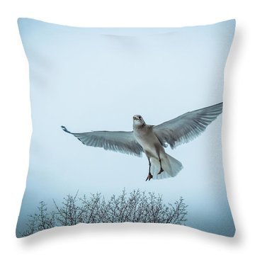 Floating On Hope  Throw Pillow by Glenn Feron