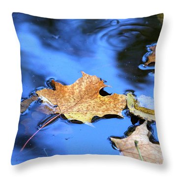 Throw Pillow featuring the photograph Floating On The Reflected Sky by Doris Potter