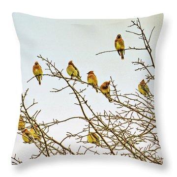 Flock Of Cedar Waxwings  Throw Pillow