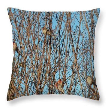 Flock Of Finches Throw Pillow