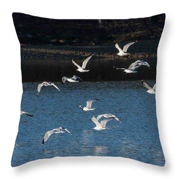Flock Of Them Throw Pillow