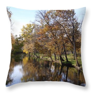 Flood Plain Throw Pillow