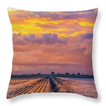 Flooded Field At Sunset Throw Pillow